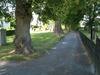 Promenad under lindarna längs östra sidan.